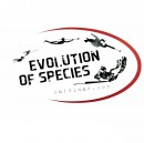 Salvimar Sticker: Evolution of Species